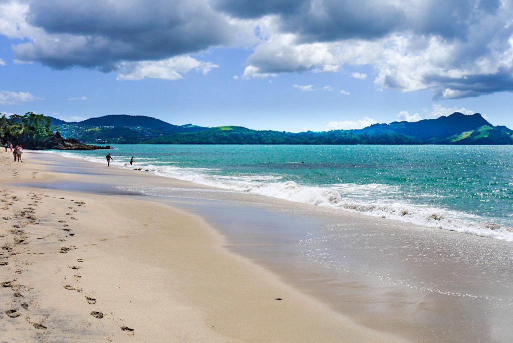 Faxmill Beach: schönste Strände & herrliche Buchten bei Whitianga - Coromandel Highlights - Nordinsel, Neuseeland