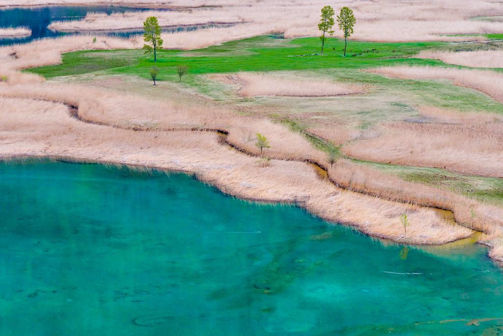 Atemberaubende Farben: Lago di Mezzola im Pian di Spagna Naturschutzgebiet - Wanderung im Norden des Comer See - Lombardei, Italien