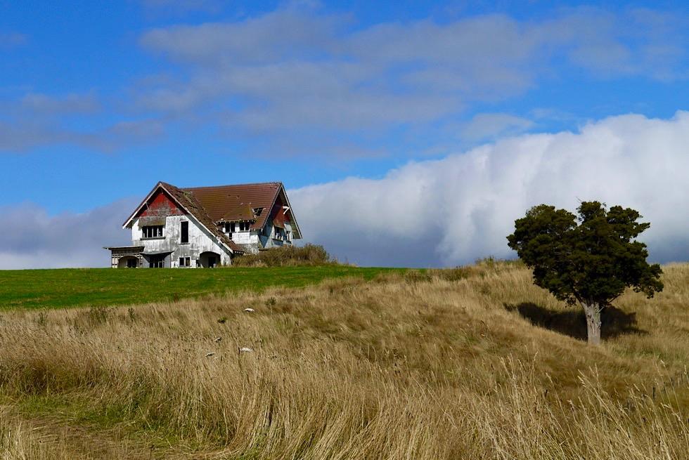 Von Martinborough nach Cape Palliser - Weites Farmland & Verlassener Hof - Nordinsel, Neuseeland