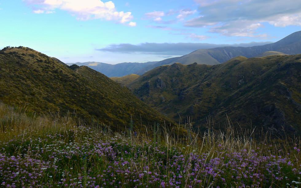 Near Castle Hill west of Christchurch NZ