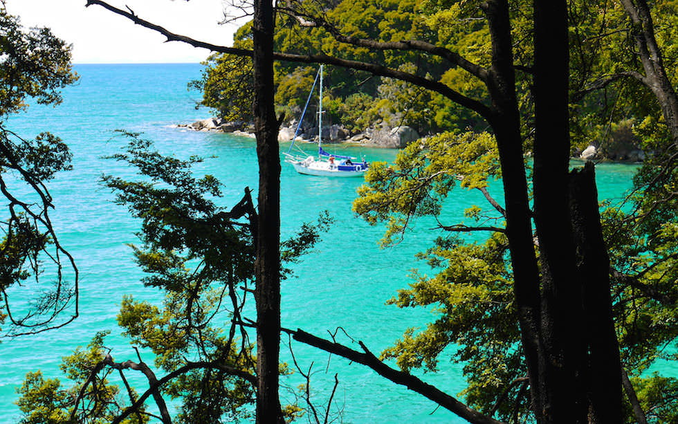 Abel Tasman National Park near Bark Bay - South Island NZ