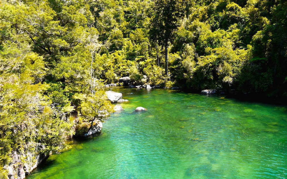 Falls River at Abel Tasman National Park on South Island NZ
