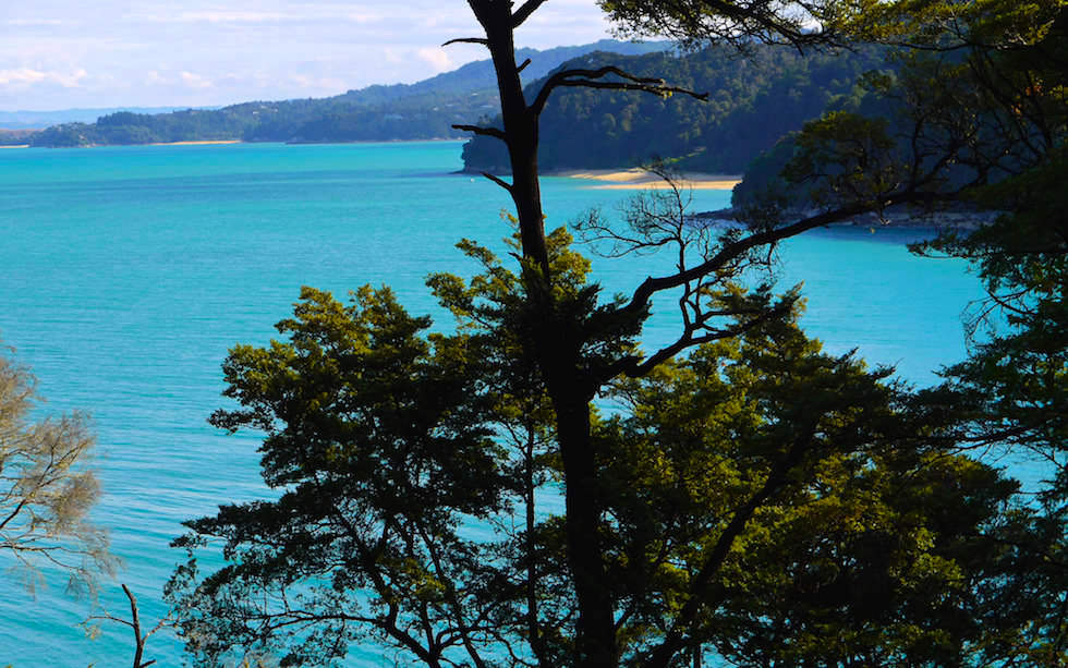 Stunning view on coast line of Abel Tasman National Park on South Island NZ