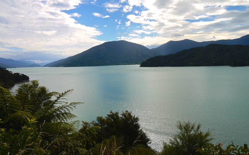View from Awesome Queen Charlotte Drive between Piction and Havelock South Island NZ