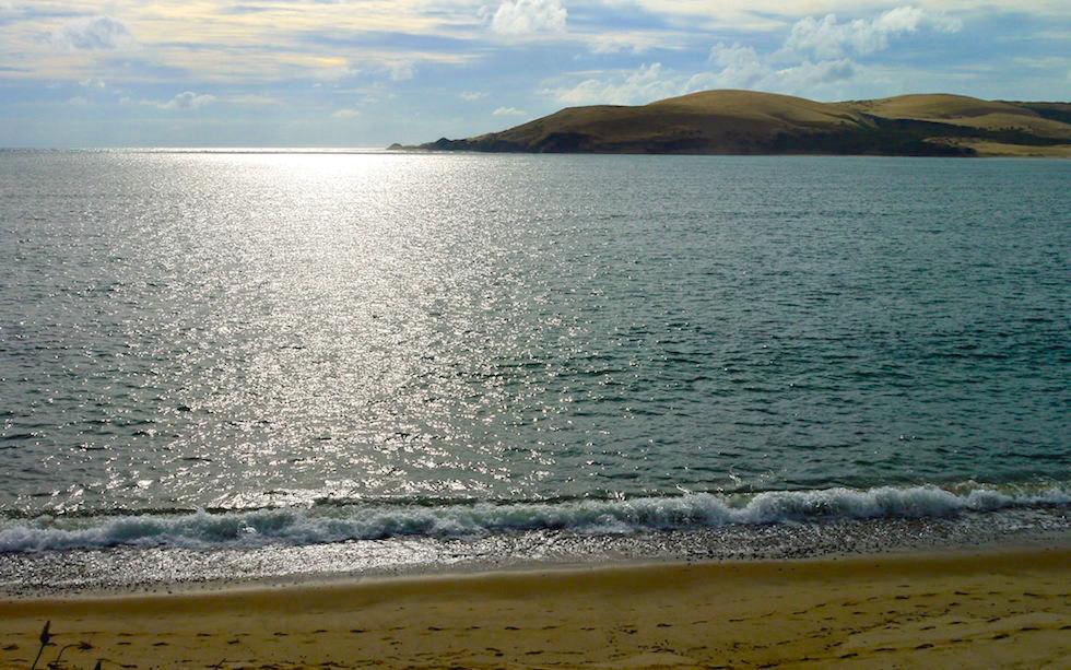 Sand dunes Hokianga Harbour  Far North New Zealand