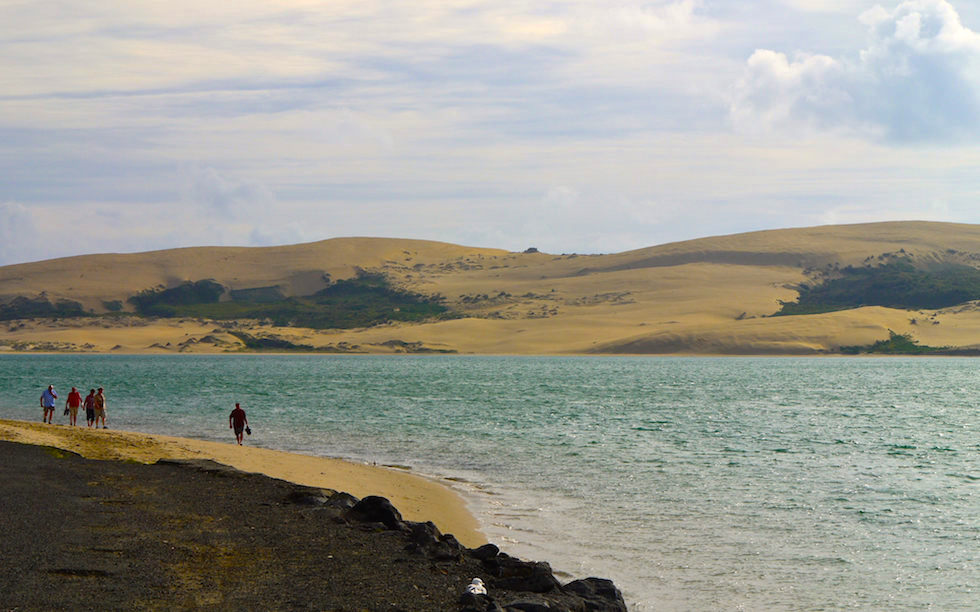 View on Sand dunes Hokianga Harbour Far North New Zealand