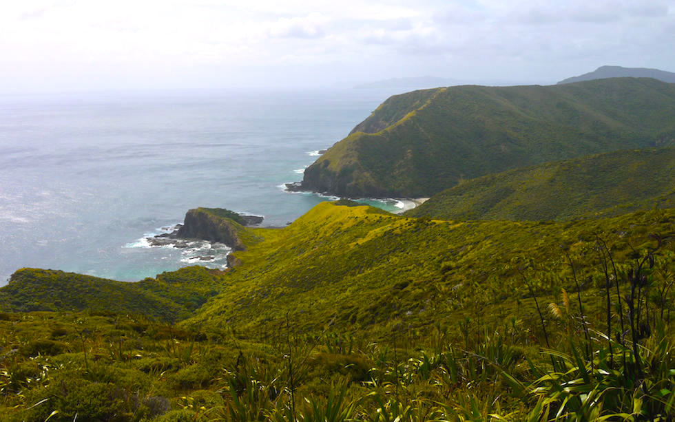 View at Cost Line of Cape Reinga North Island NZ
