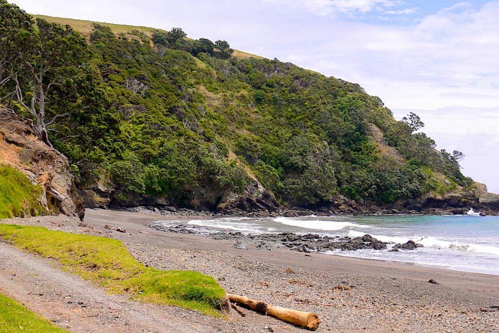 Port Jackson Bay & Campsite - Paradies und Idylle ganz im Norden der Coromandel Peninsula - Nordinsel, Neuseeland