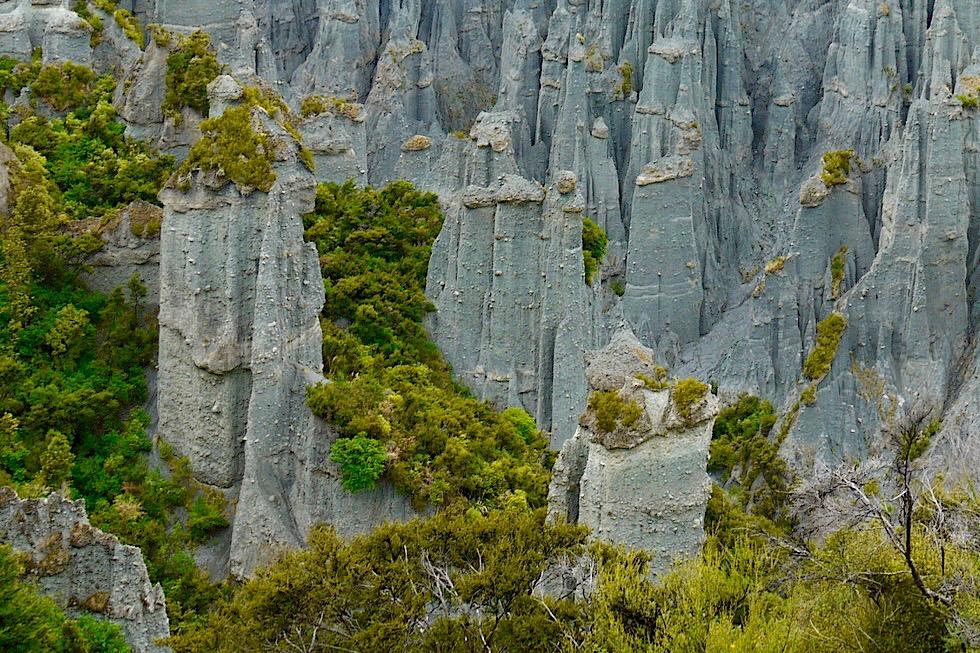 Putangirua Pinnacles - Spektakulärer Ausblick vom Pinnacles Lookout - Nahe Cape Palliser an der Südostküste der Nordinsel von Neuseeland