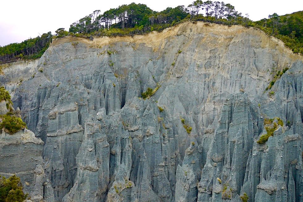 Putangirua Pinnacles - Atemberaubender Ausblick vom Pinnacle Lookout auf die Steilwand mit den vielen Felsnadeln - Eines der Cape Palliser Highlights - Südlichster Punkt auf der Nordinsel, Neuseeland