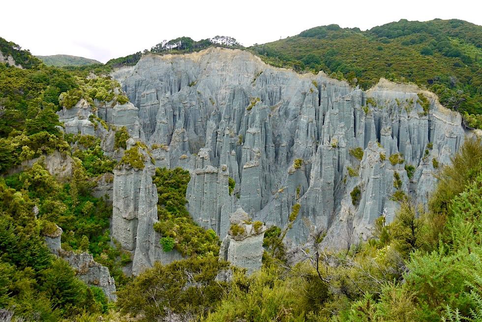 Putangirua Pinnacles oder Herr der Ringe Felstürme - Auf dem Weg zum Cape Palliser - Nordinsel, Neuseeland