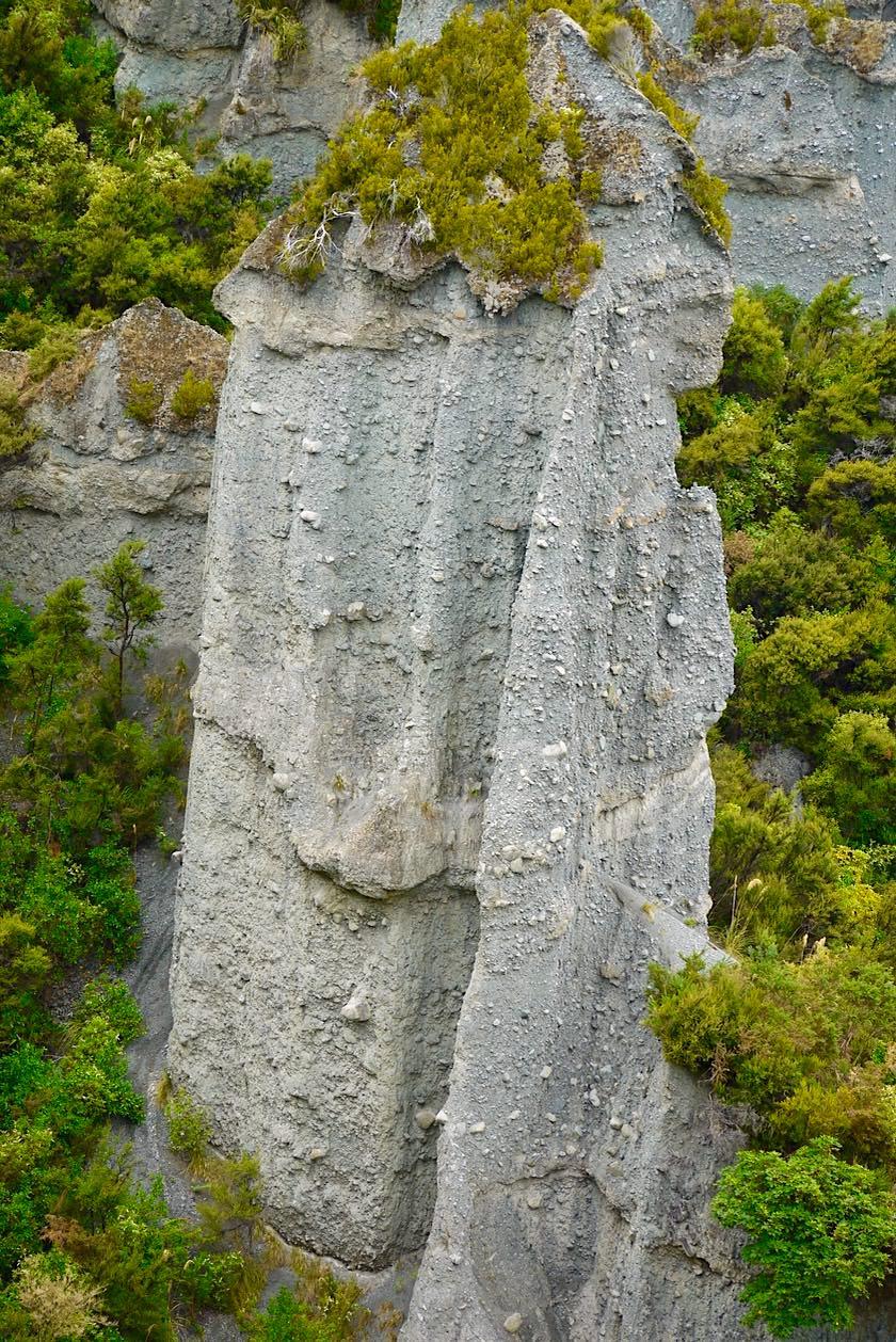 Putangirua Pinnacles - Wanderung zu den imposante Steinsäulen - Nahe Cape Palliser - Nordinsel, Neuseeland
