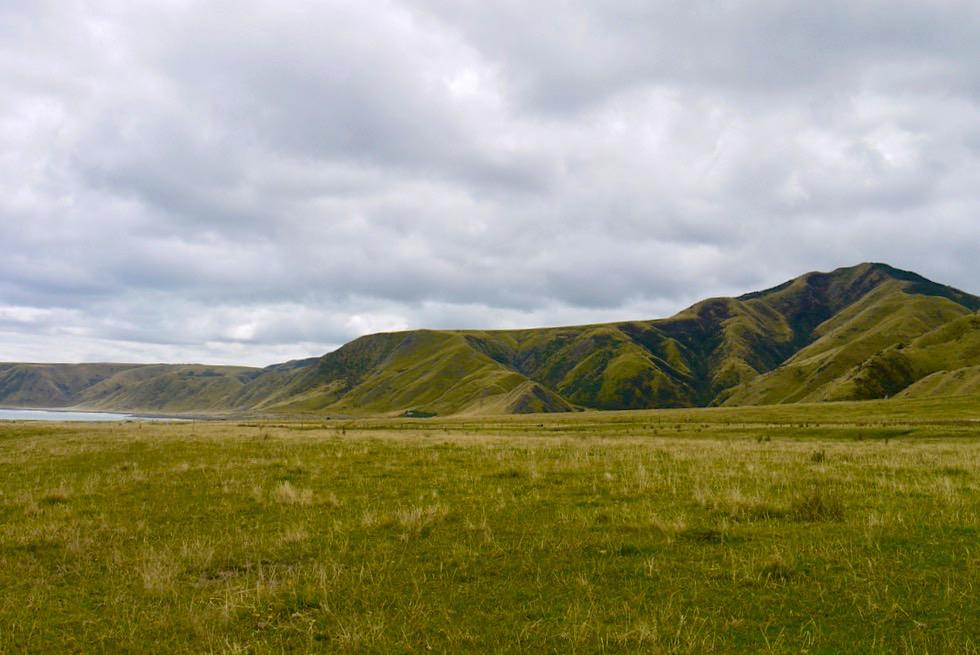 Putangirua Pinnacles - Landschaft an der Südküste & Zufahrt zu den Felstürmen - Nordinsel, Neuseeland