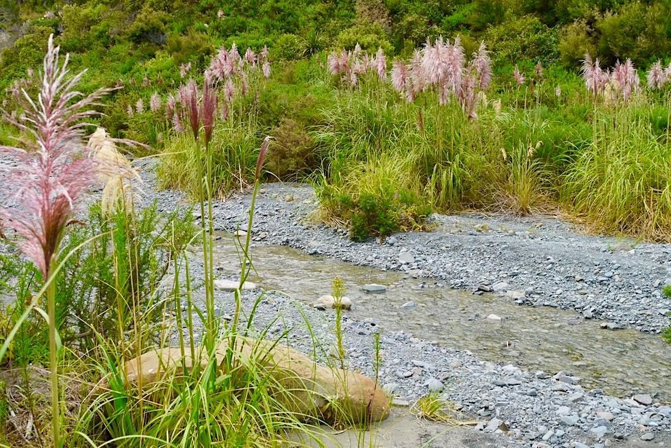 Putangirua Pinnacles - Schöne Wanderung entlang dem Flussbett zu den Felsnadeln - Südküste Nordinsel, Neuseeland