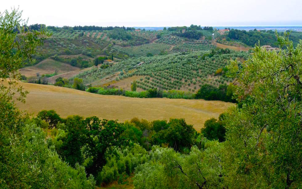 Landschaft in der Toskana Italien
