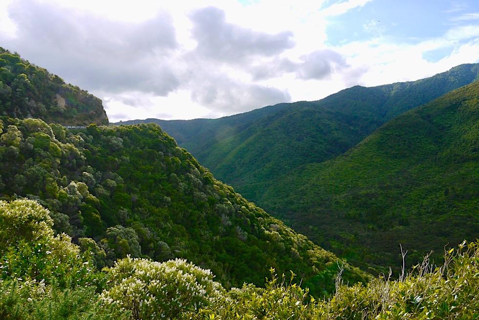 Tararua Forest Park - Von der Westküste nach Martinborough - Nordinsel, Neuseeland