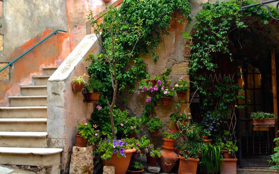 Toskana typische Blumenpracht in den Dörfern - Italien