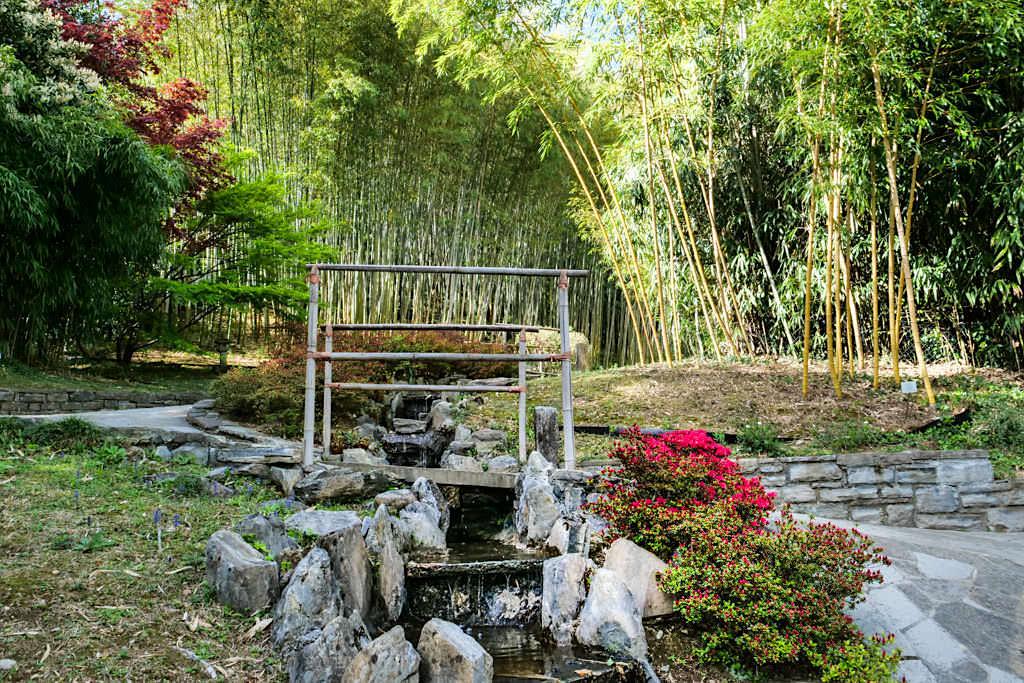 Villa Carlotta - Riesiger Bambusgarten mit 25 verschiedenen Bambusarten - Comer See - Lombardei, Italien
