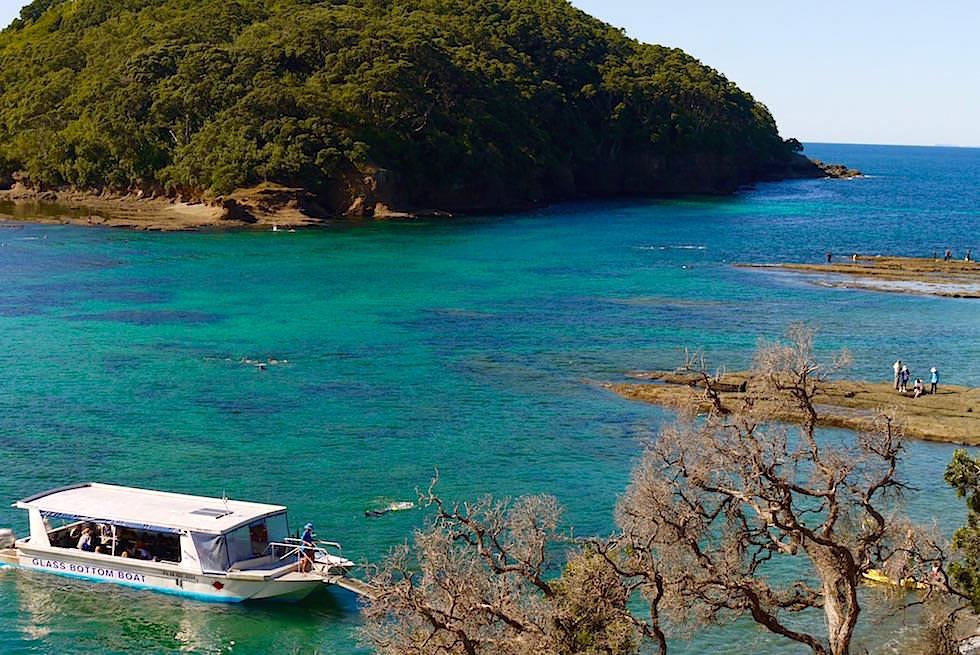 Cape Rodney bei Leigh - Auckland Neuseeland