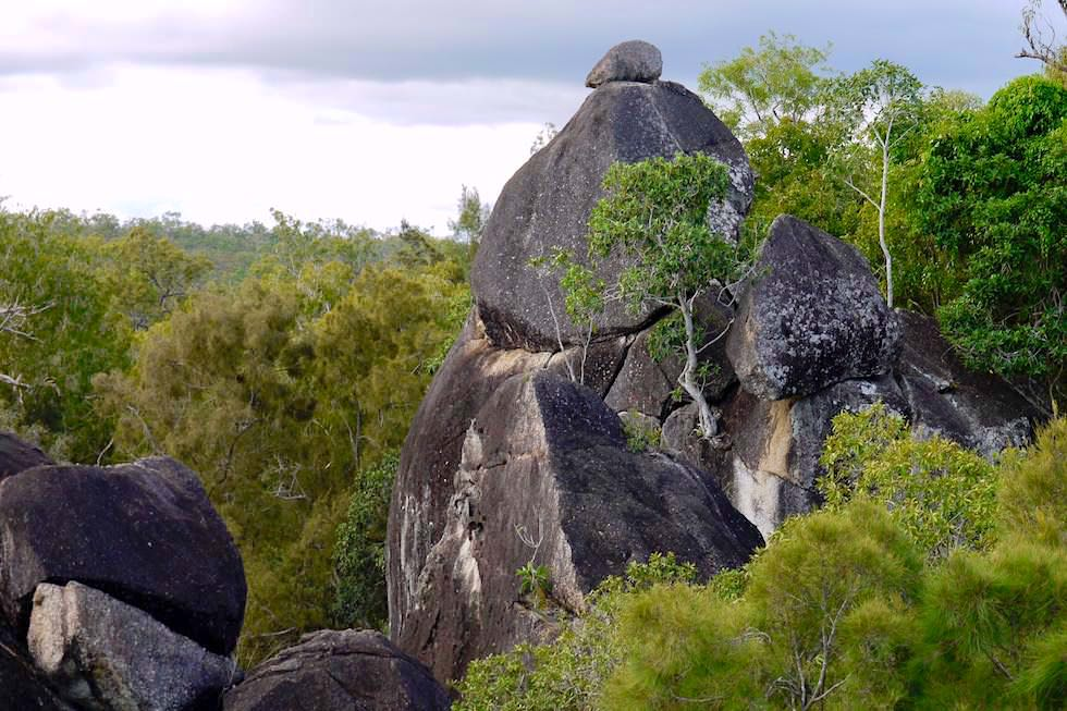Granite Gorge Nature Park - Faszinierende Felsen & Buschlandschaft - nahe Cairns, Queensland