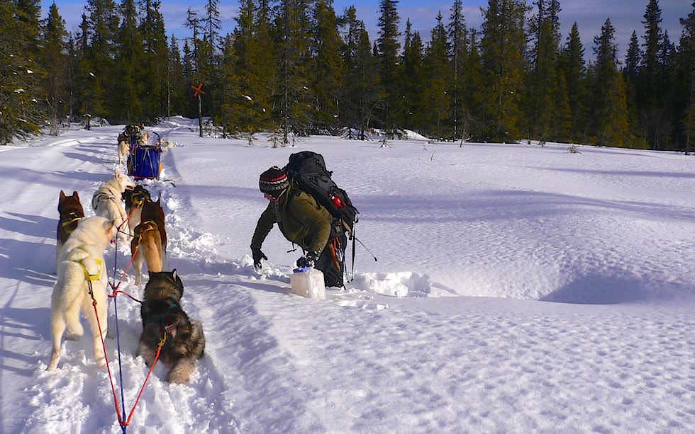 Wasserloch - Husky Schittentour Lappland