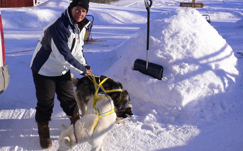 Husky Adventure Lappland