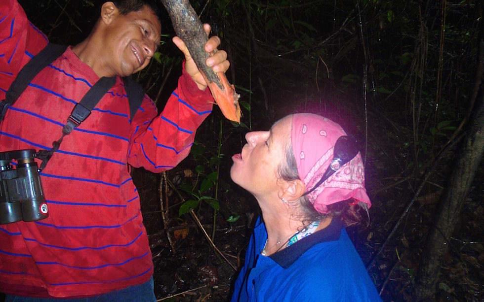 Peru - Amazonas Trekking
