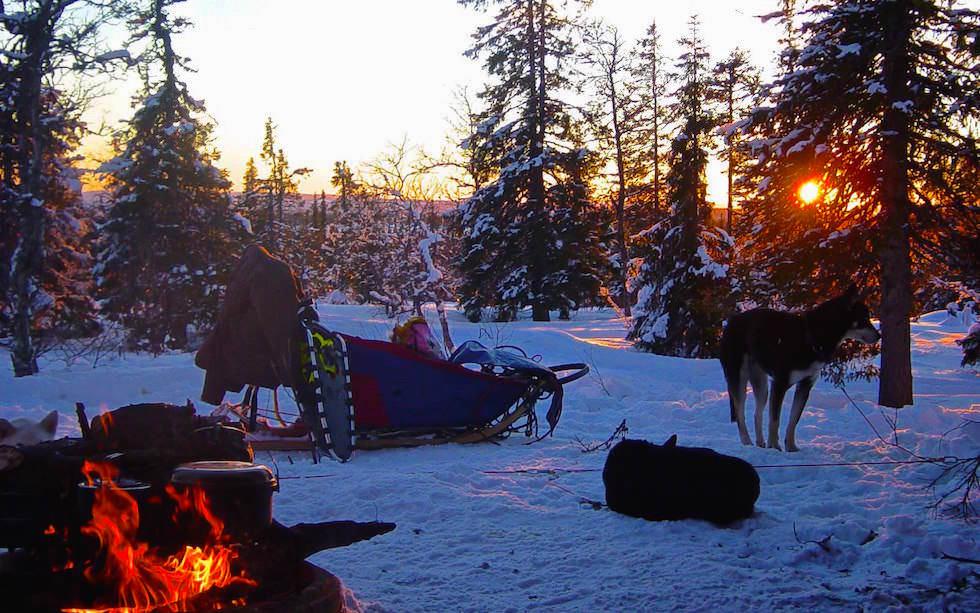 Lagerfeuer - Lappland Husky Schittentour