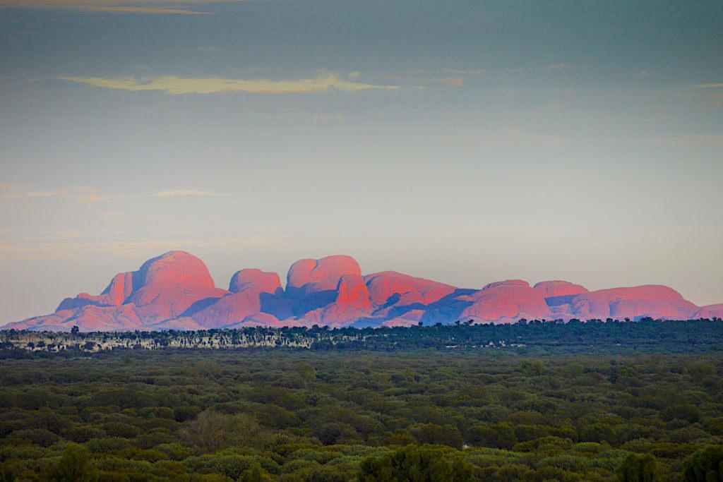 Die Olgas Sonnenaufgang gesehen vom Kata Tjuta Dune Lookout - Northern Territory