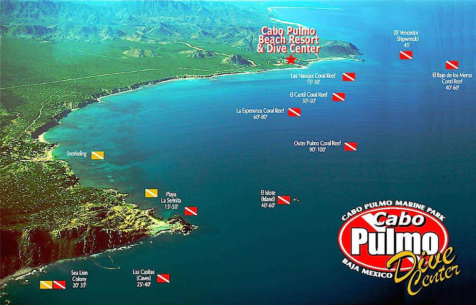Cabo Pulmo - Die besten Tauchspots & Schnorchelplätze - Baja California