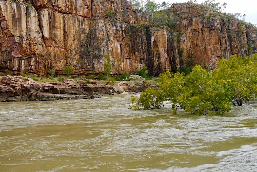 Katherine Gorge - Hochwasser & Ende der 1. Schlucht - Nitmiluk National Park - Northern Territory