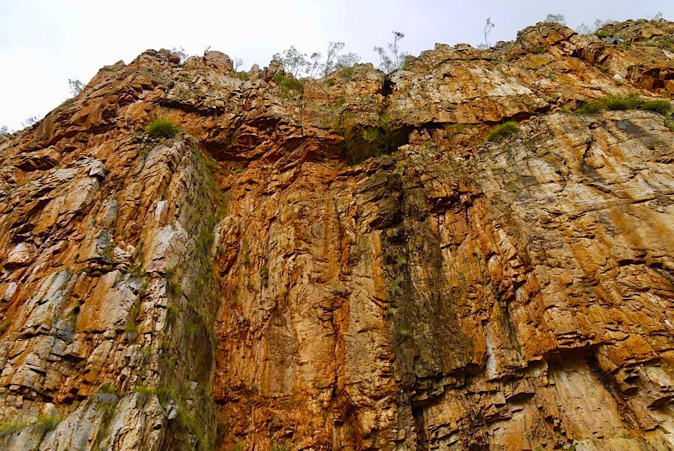 Katherine Gorge - Imposante Steilwände zwischen der 1. & 2. Schlucht - Nitmiluk National Park - Northern Territory
