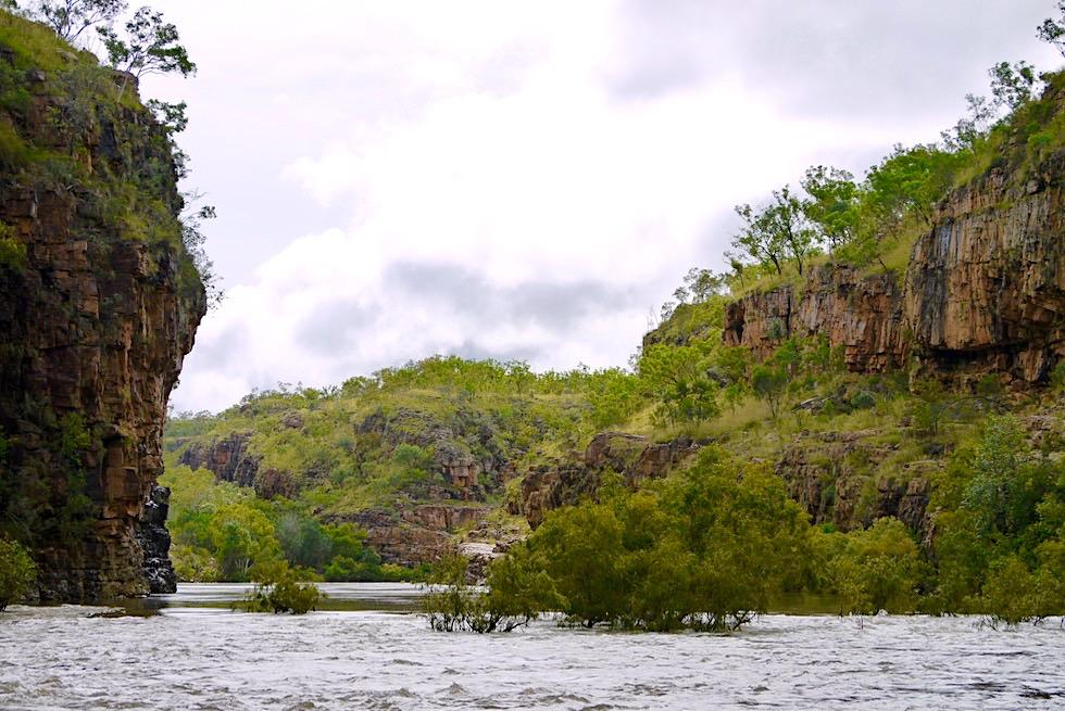 Katherine Gorge zur Regenzeit - Nitmiluk National Park - Northern Territory