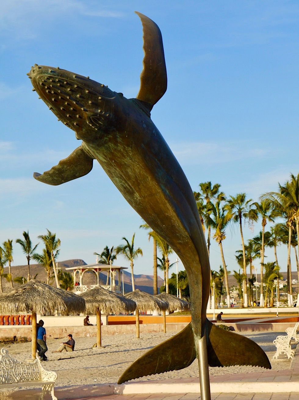 La Paz - Gigantische Buckelwal-Statue am Malecon - Baja California - Mexiko
