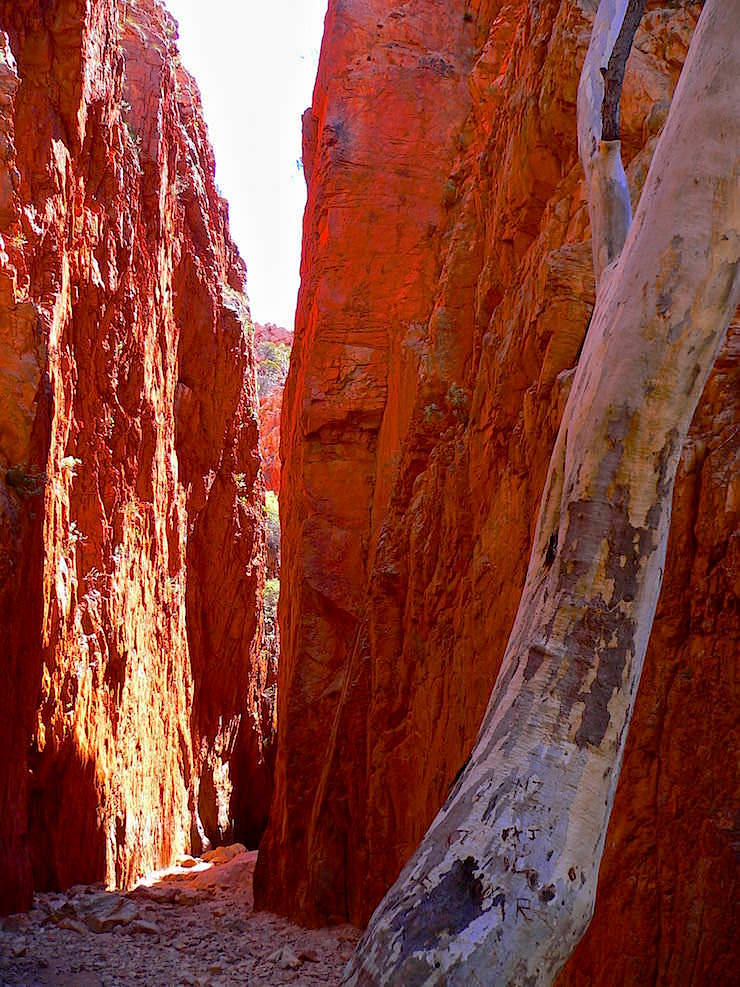 Standley Chasm MacDonnell National Park - Alice Springs - MacDonnell Range