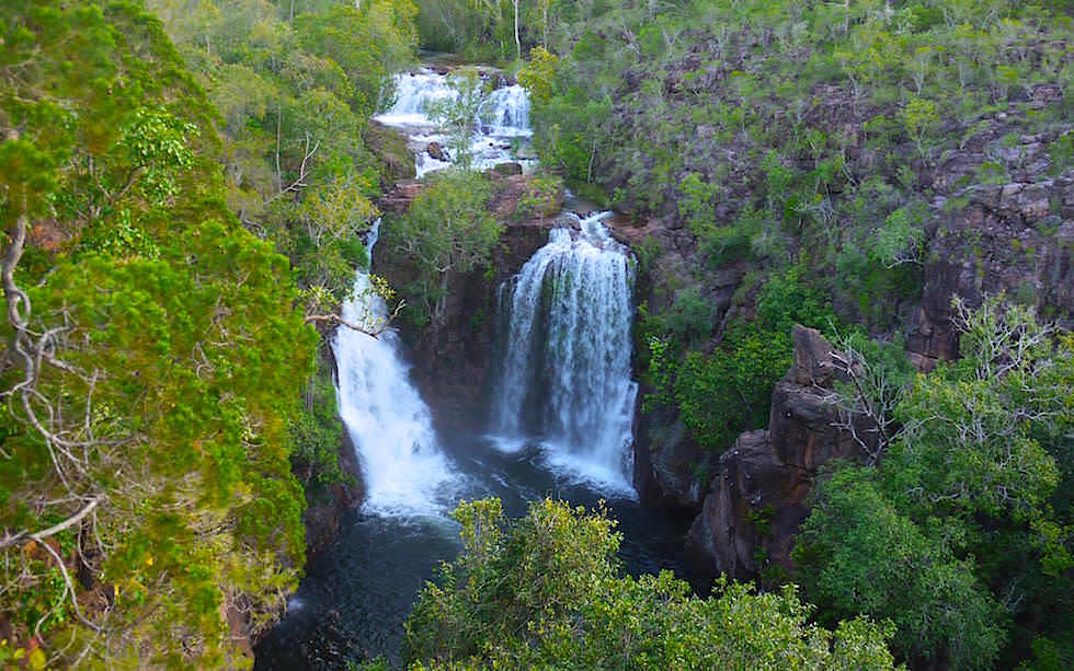 Litchfield National Park: Reissende Florence Falls zur Regenzeit- Highlight in Northern Territory
