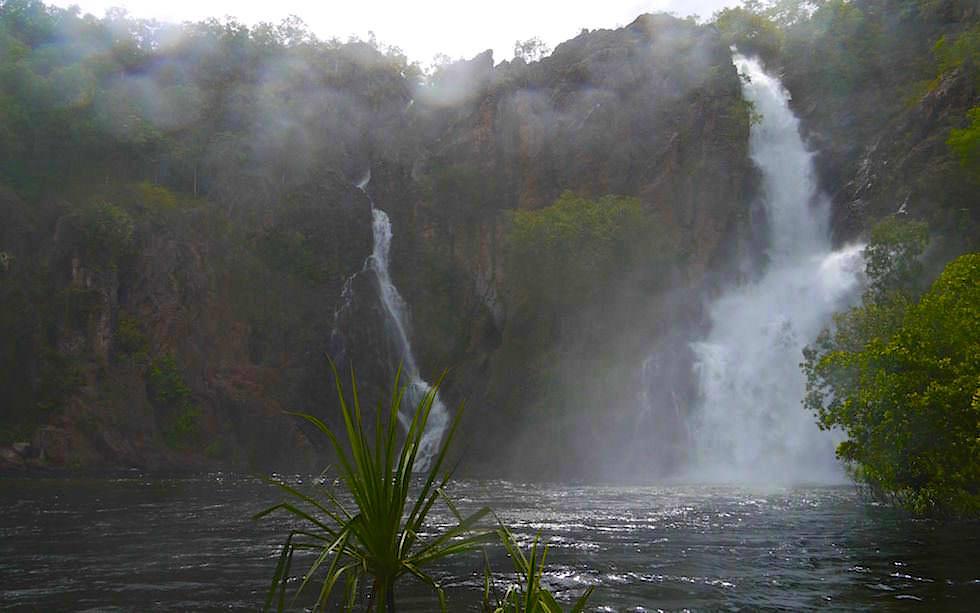 Schäumende Wangi Falls im Litchfield National Park zur Regenzeit - Northern Territory