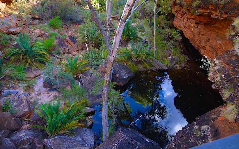 Garden Eden Pool Kings Canyon Grand Canyon Australien - Northern Territory
