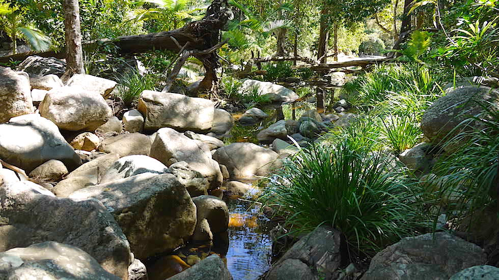Auf dem Weg zu den Jourama Falls Queensland Australien