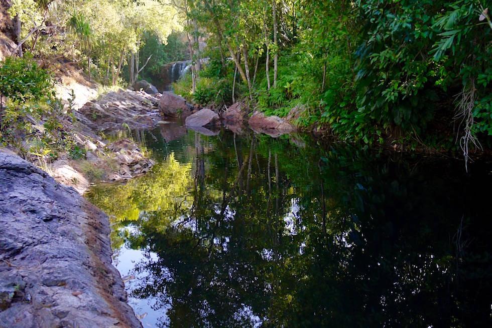 Blick auf Curtain Falls - Lower Cascades Wanderung - Litchfield National Park - Northern Territory