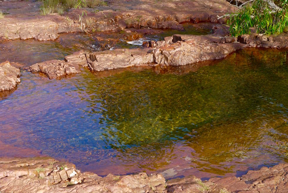 Kristallklare Pools - Lower Cascades - Litchfield National Park - Northern Territory