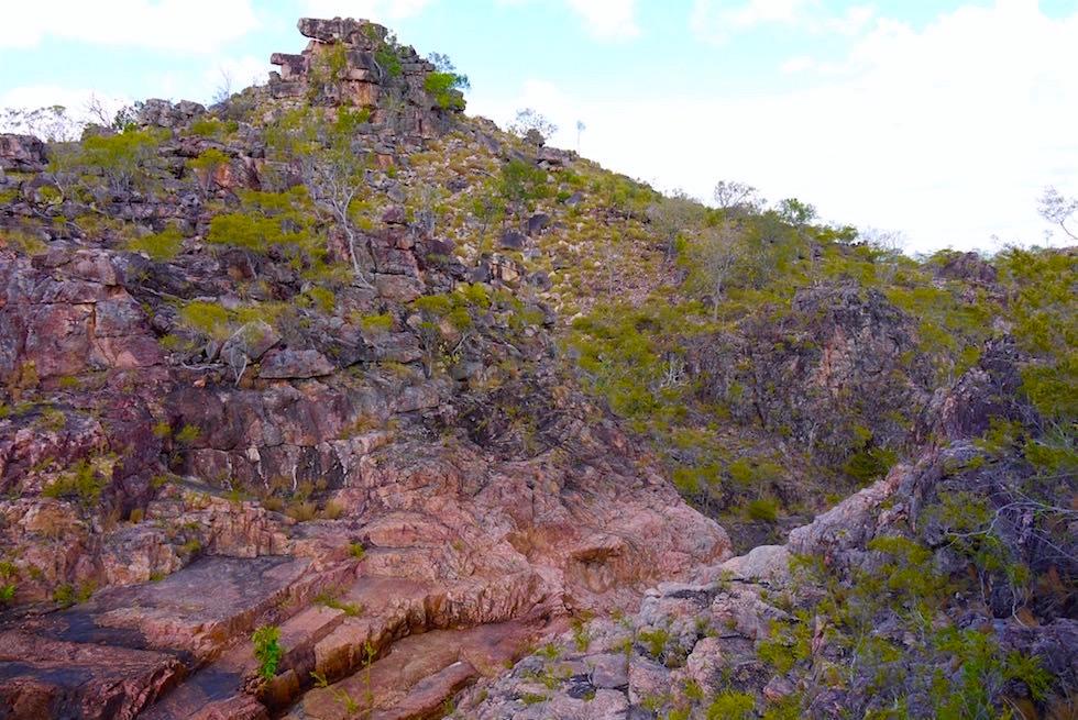 Eindrücke auf dem Tolmer Creek Walk - Lichtfield National Park - Northern Territory