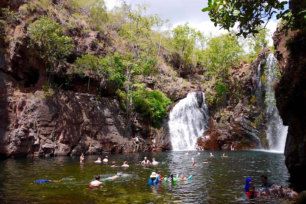 Litchfield National Park: Florence Falls - Badefreuden im Pool unterhalb der Wasserfälle - Northern Territory