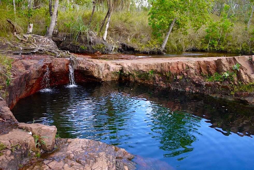 Litchfield National Park ein besonderes Nationalpark Highlight bei Darwin - Buley Rockhole: Wasserspieglungen - Northern Territory