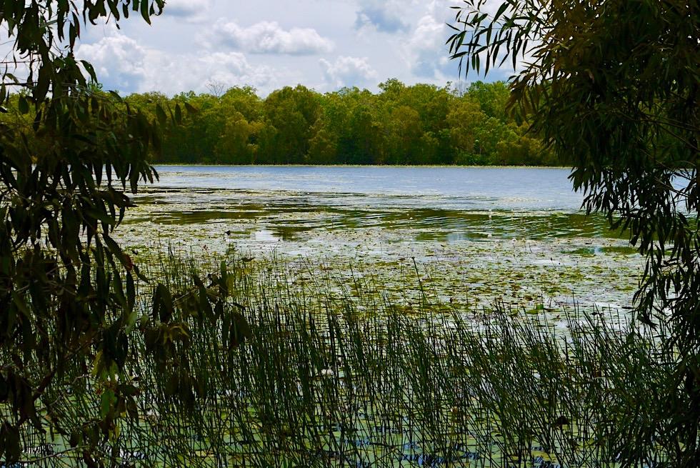 Territory Wildlife Park - Goose Lagoon zur Regenzeit - nahe Darwin, Northern Territory