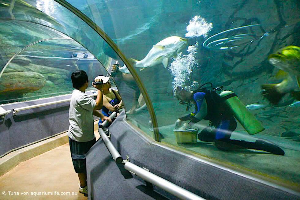 Territory Wildlife Park - © Tuna von aquarium.com.au