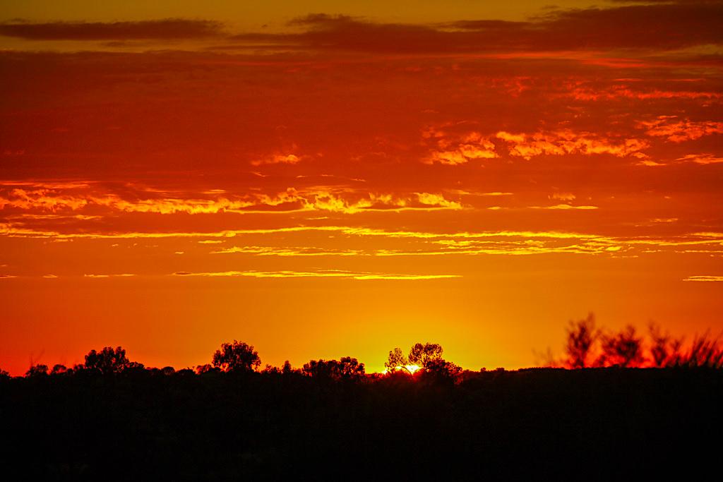 Uluru - Feuriger Sonnenaufgang über der Wüste im Nationalpark - Northern Territory