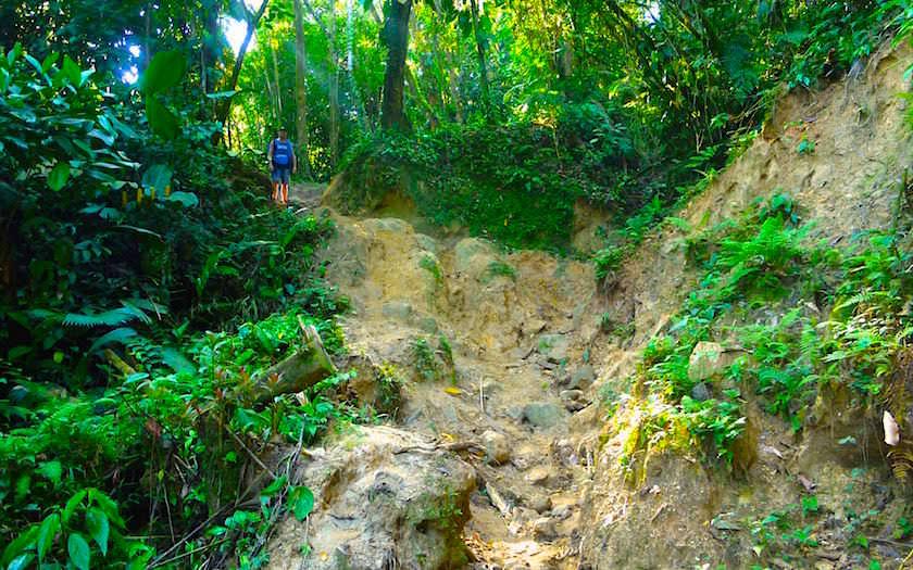 Ciudad Perdiada Trekking - Bergauf und Bergab über teils sehr ausgewaschene Pfade - Atemberaubendes Dschungeltrekking in Kolumbien