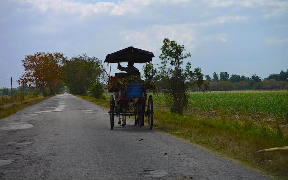 Irgendwo in der Nähe von Bayamo Kuba - - Kuba jenseits des Tourismus erleben!
