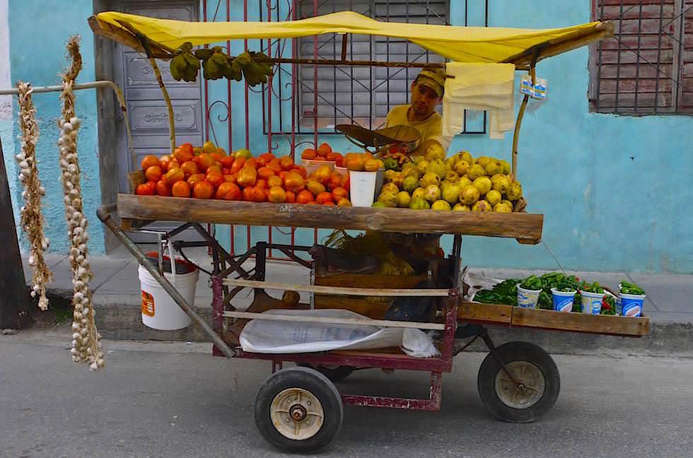 Landwirtschaftszentrum Santa Clara Kuba